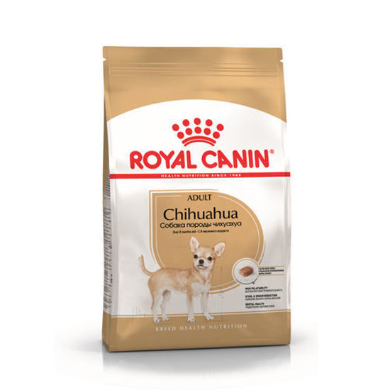 Picture of BHN CHIHUAHUA 3K